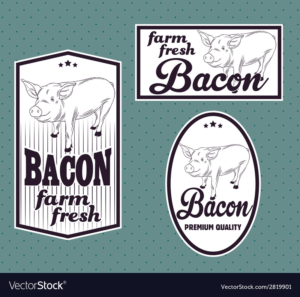 Bacon vintage labels set vector | Price: 1 Credit (USD $1)