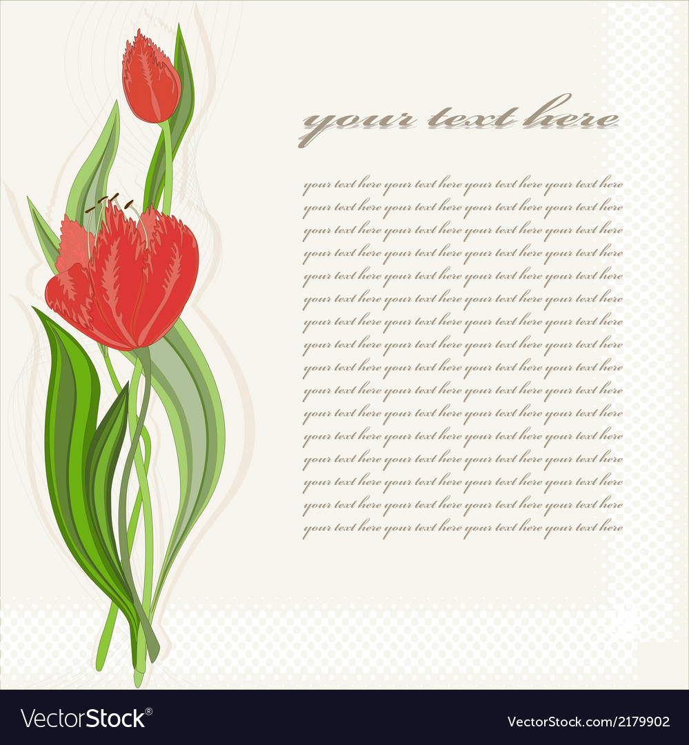 Greeting card with tulip vector | Price: 1 Credit (USD $1)
