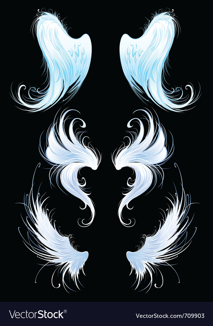 Angel wings vector | Price: 3 Credit (USD $3)