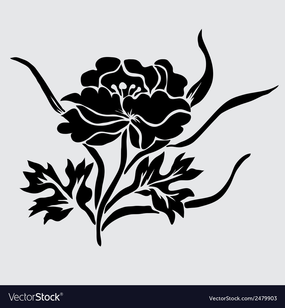 Decorative peony vector | Price: 1 Credit (USD $1)