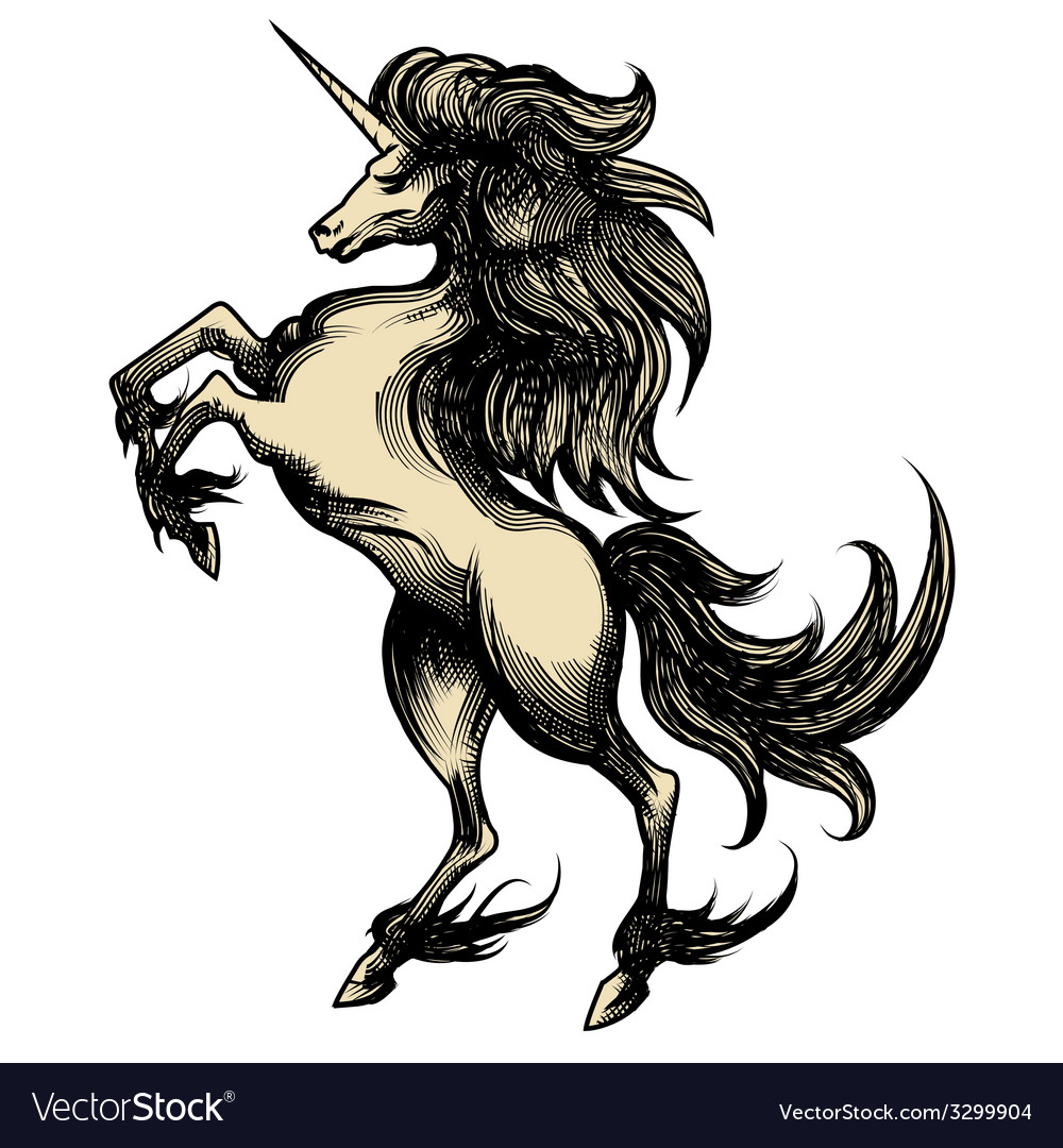 Heraldry unicorn drawn in engraving style vector | Price: 1 Credit (USD $1)