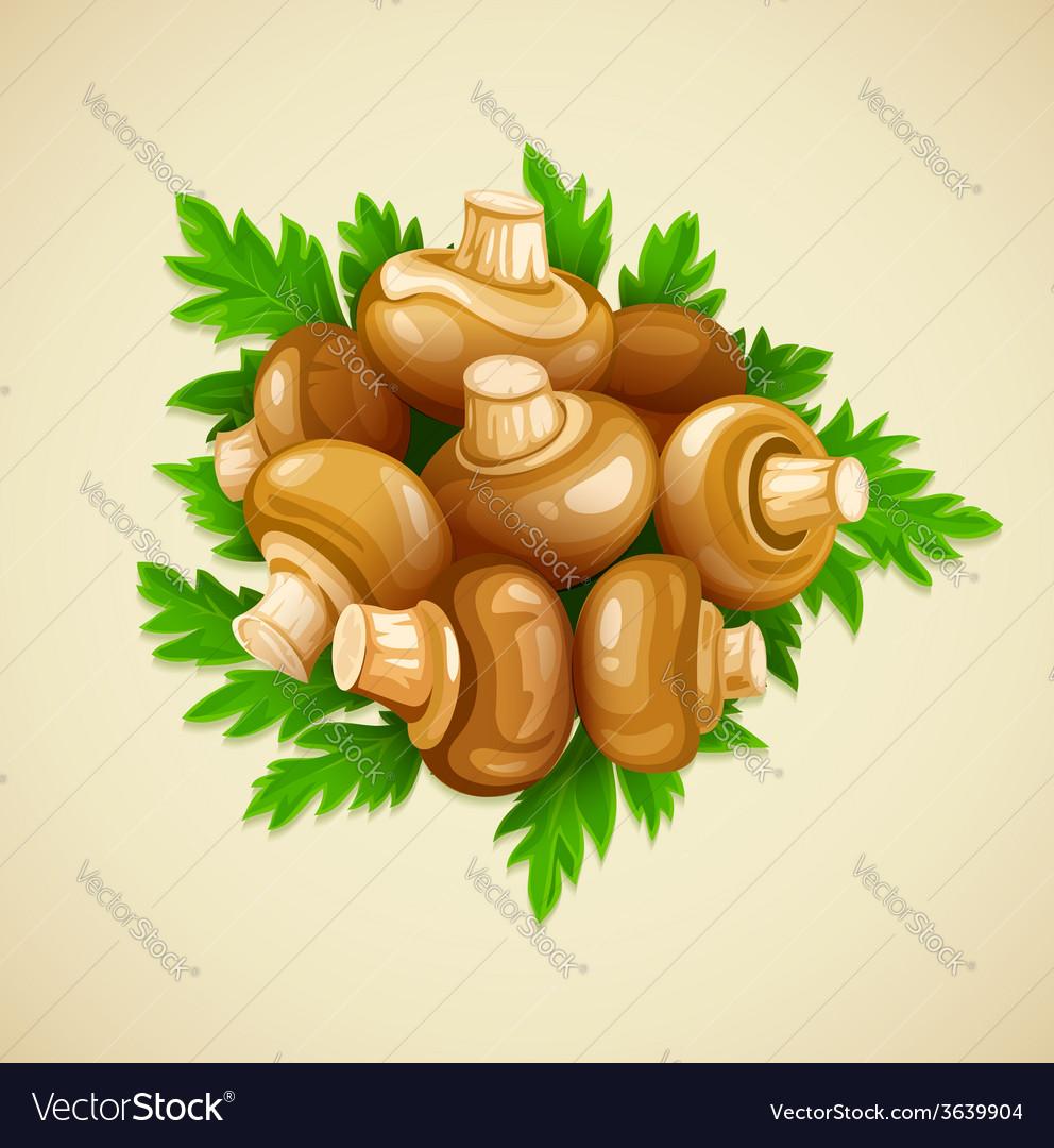 Organic food mushrooms vector | Price: 3 Credit (USD $3)
