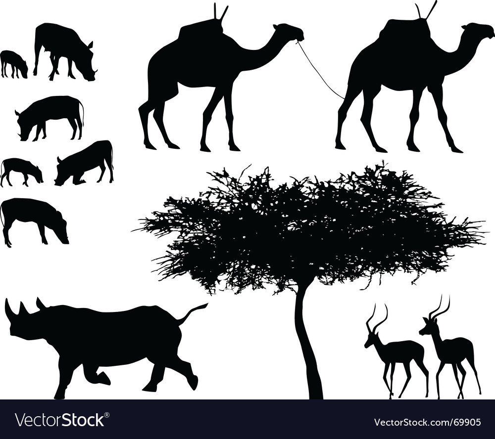 Exotic trees and animals vector | Price: 1 Credit (USD $1)