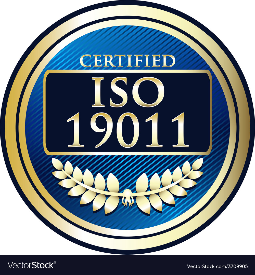 Iso 19011 vector | Price: 1 Credit (USD $1)