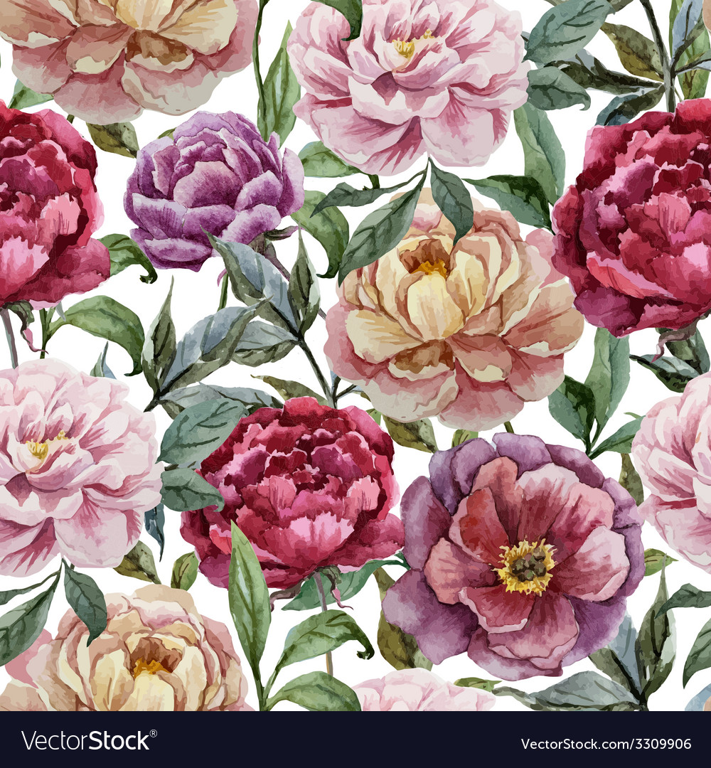 Beautiful watercolor pattern with peonies on white vector | Price: 1 Credit (USD $1)