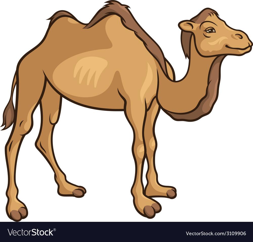 Camel 2 vector | Price: 1 Credit (USD $1)
