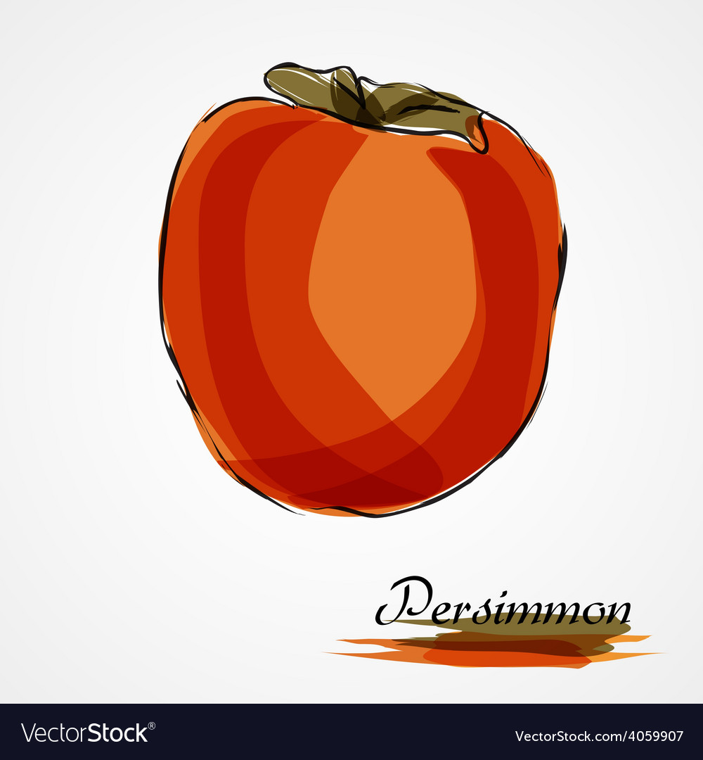Persimmon vector | Price: 1 Credit (USD $1)