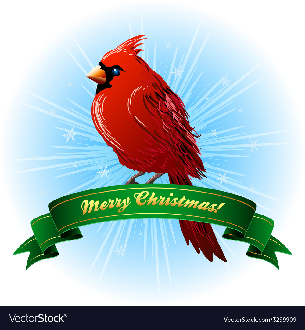 Christmas frame with northern cardinal vector | Price: 1 Credit (USD $1)