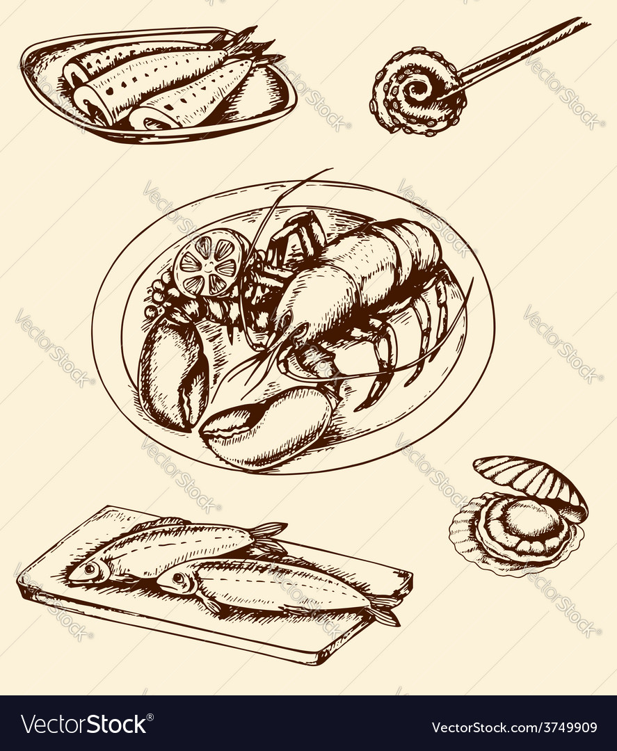 Vintage hand drown seafood vector | Price: 1 Credit (USD $1)