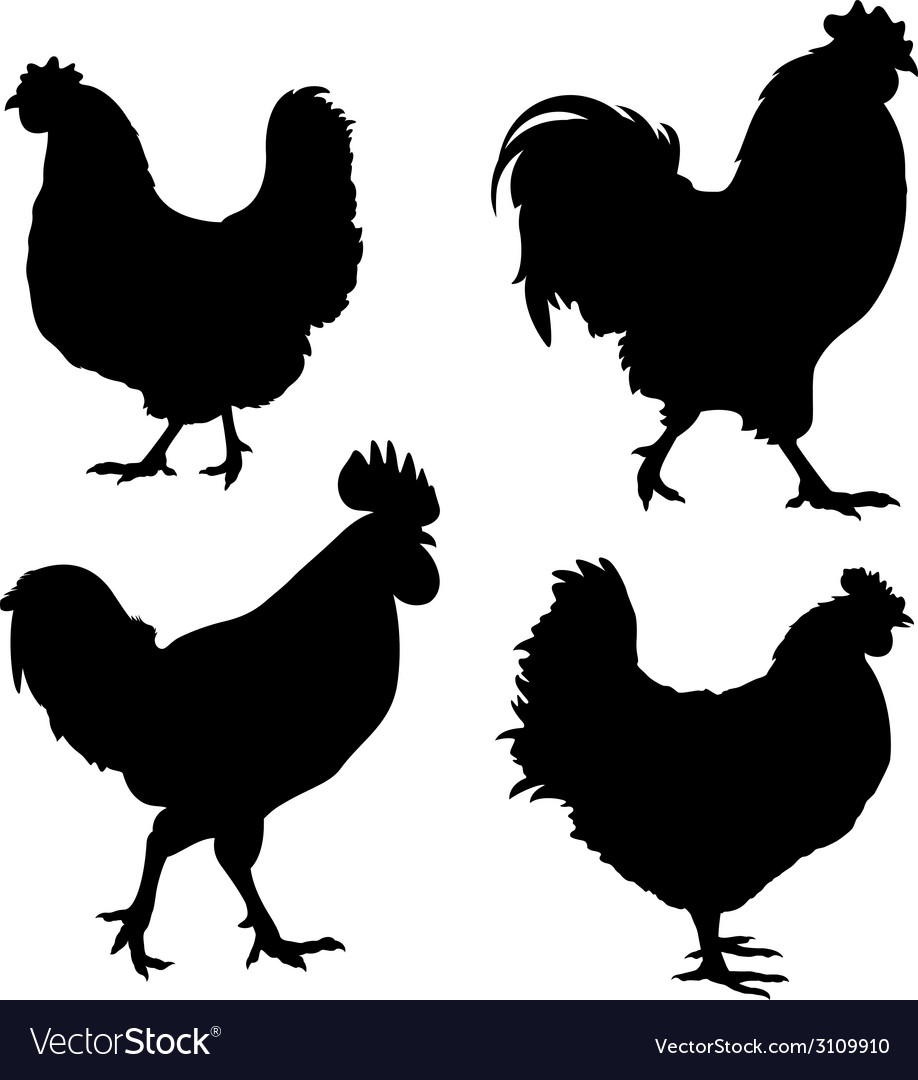 Chicken silhouette vector | Price: 1 Credit (USD $1)