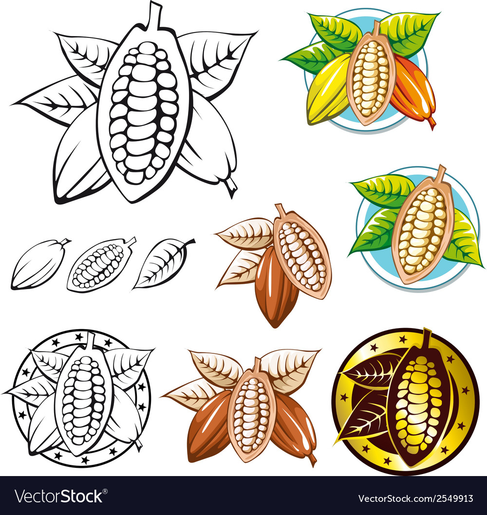 Cocoa bean symbols vector | Price: 1 Credit (USD $1)