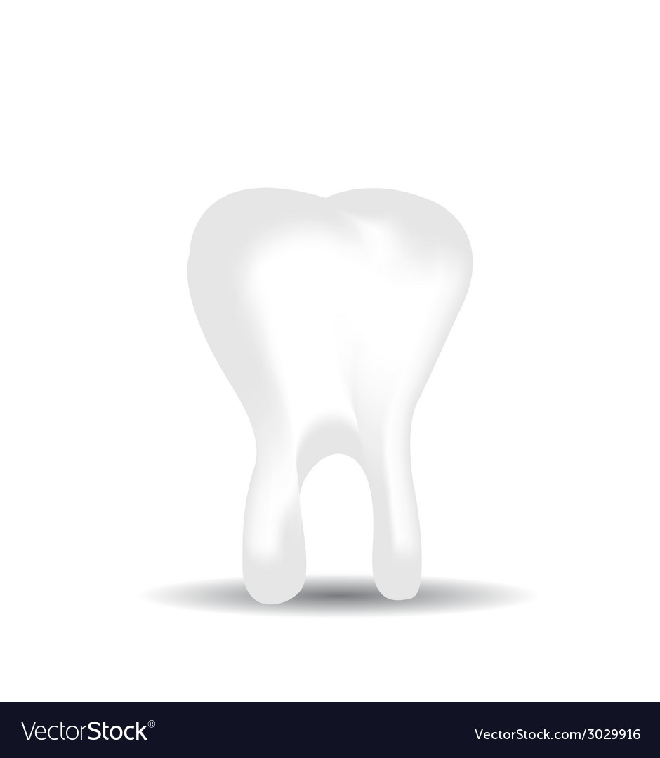 Tooth on white background vector | Price: 1 Credit (USD $1)