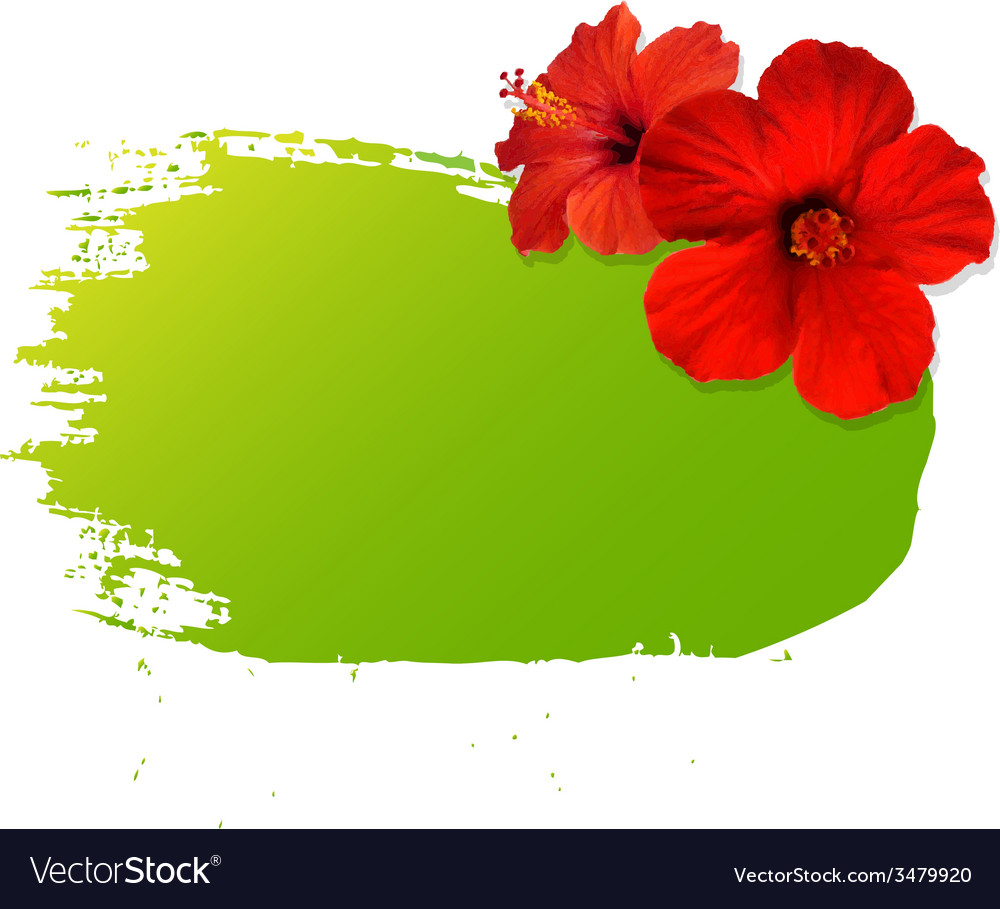 Summer banner blot with flowers vector | Price: 1 Credit (USD $1)