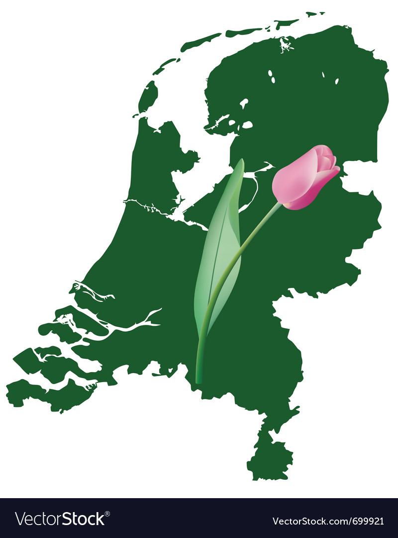 Netherlands map with tulip vector | Price: 1 Credit (USD $1)