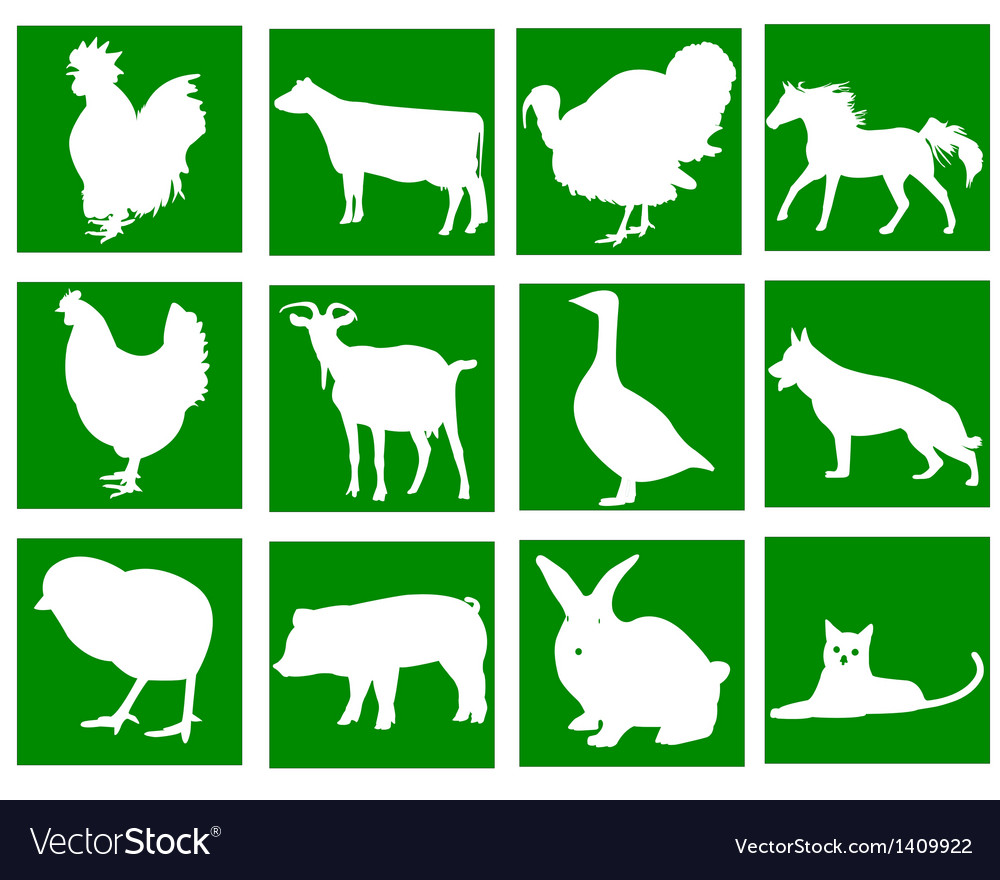 Domestic animals in the green squares vector | Price: 1 Credit (USD $1)