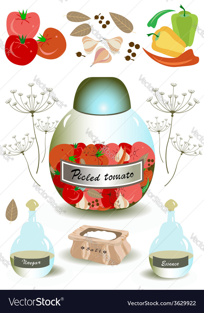 Products for pickled tomato vector | Price: 1 Credit (USD $1)