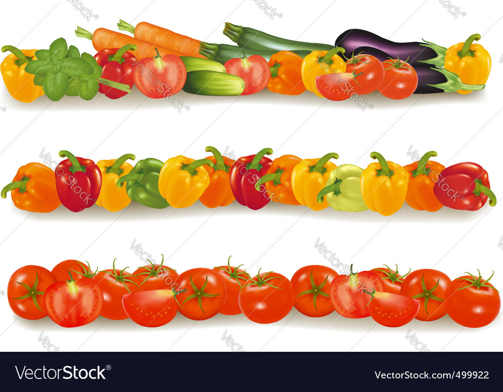 Three vegetable backgrounds vector | Price: 1 Credit (USD $1)