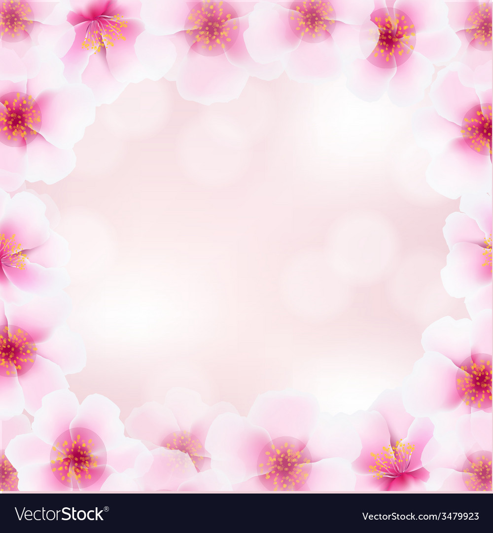 Cherry flower frame with blurred background vector | Price: 1 Credit (USD $1)