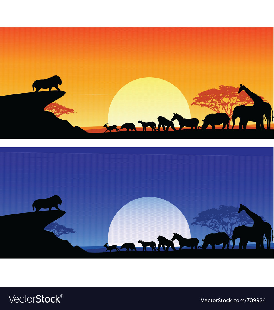Animal silhouete background vector