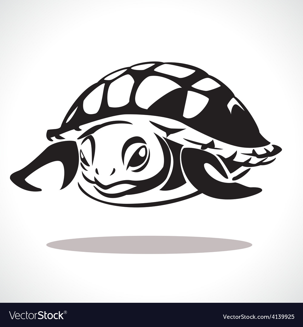 Turtle 2 vector | Price: 1 Credit (USD $1)