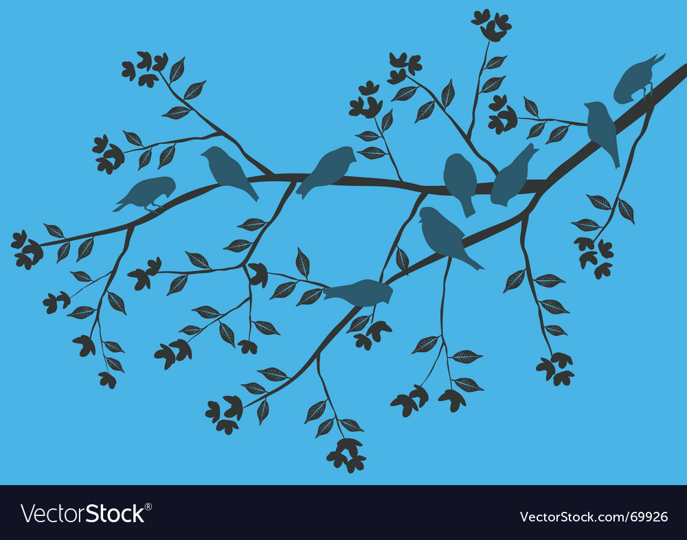 Birds on a branch vector | Price: 1 Credit (USD $1)