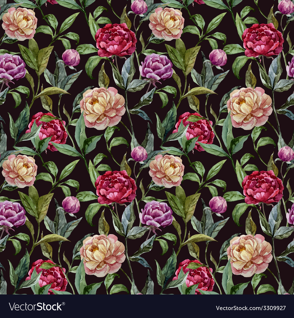 Beautiful watercolor pattern with peonies on black vector | Price: 1 Credit (USD $1)