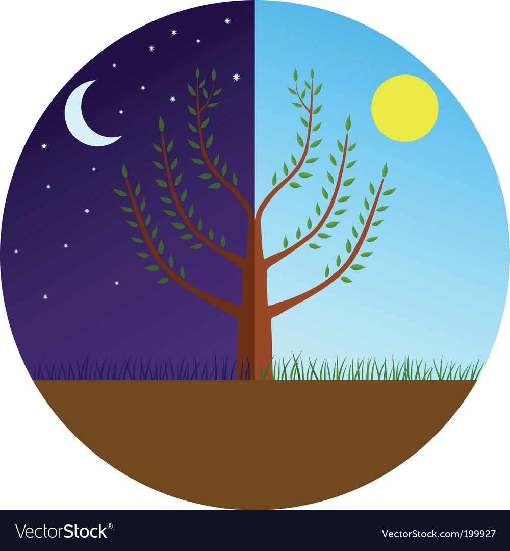 Tree at day and night vector | Price: 1 Credit (USD $1)