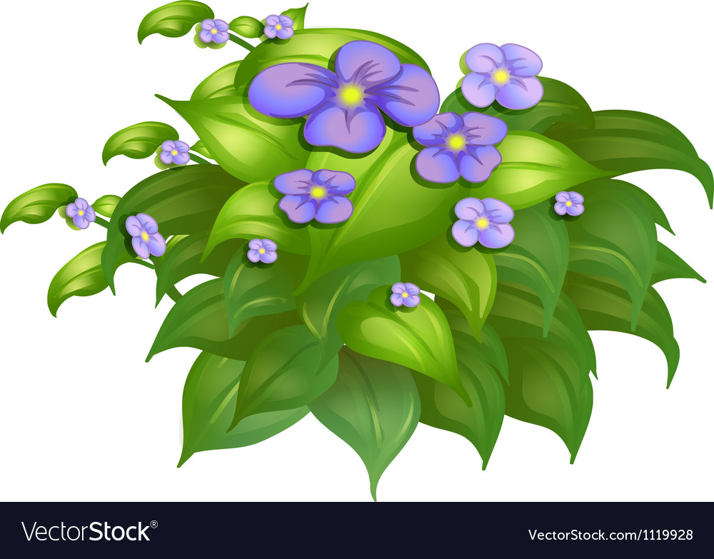 A flower plant vector | Price: 1 Credit (USD $1)