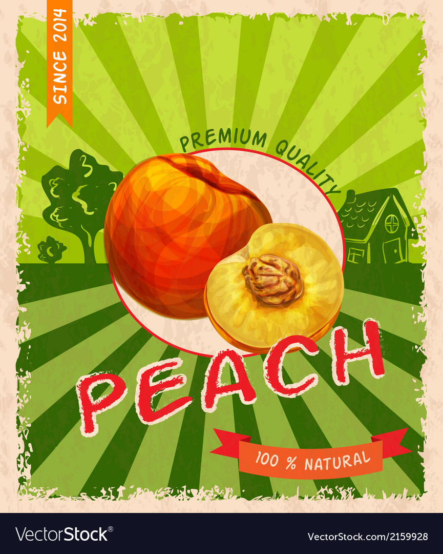 Peach retro poster vector | Price: 1 Credit (USD $1)