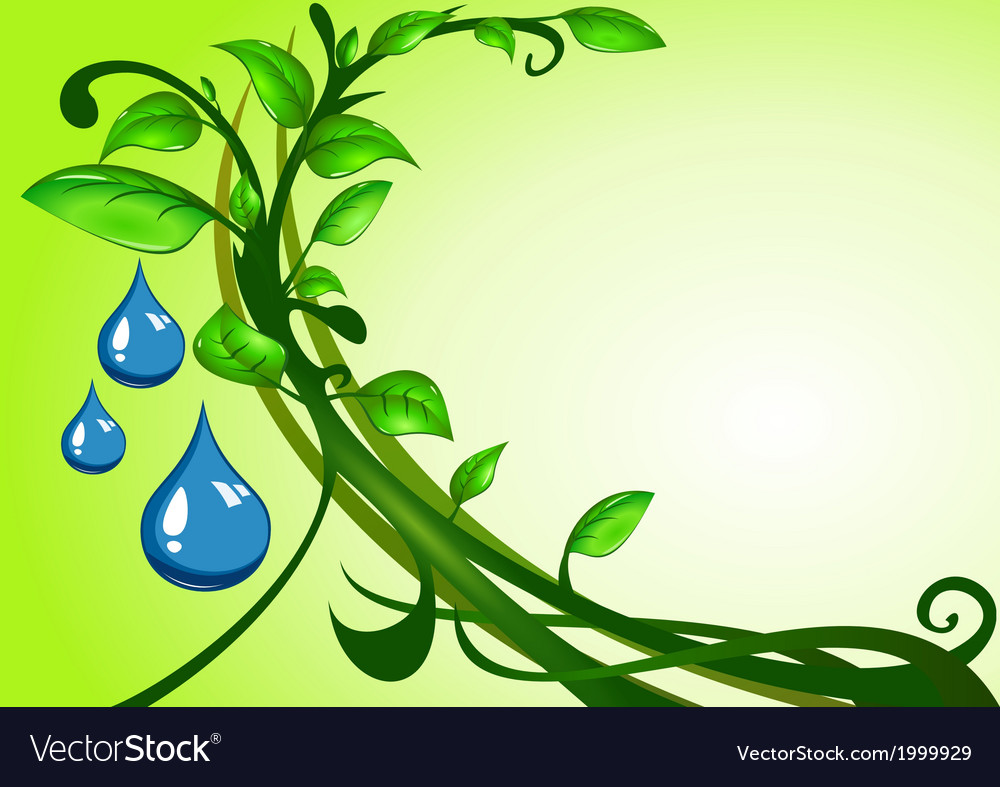 Green leaves with drops vector | Price: 1 Credit (USD $1)
