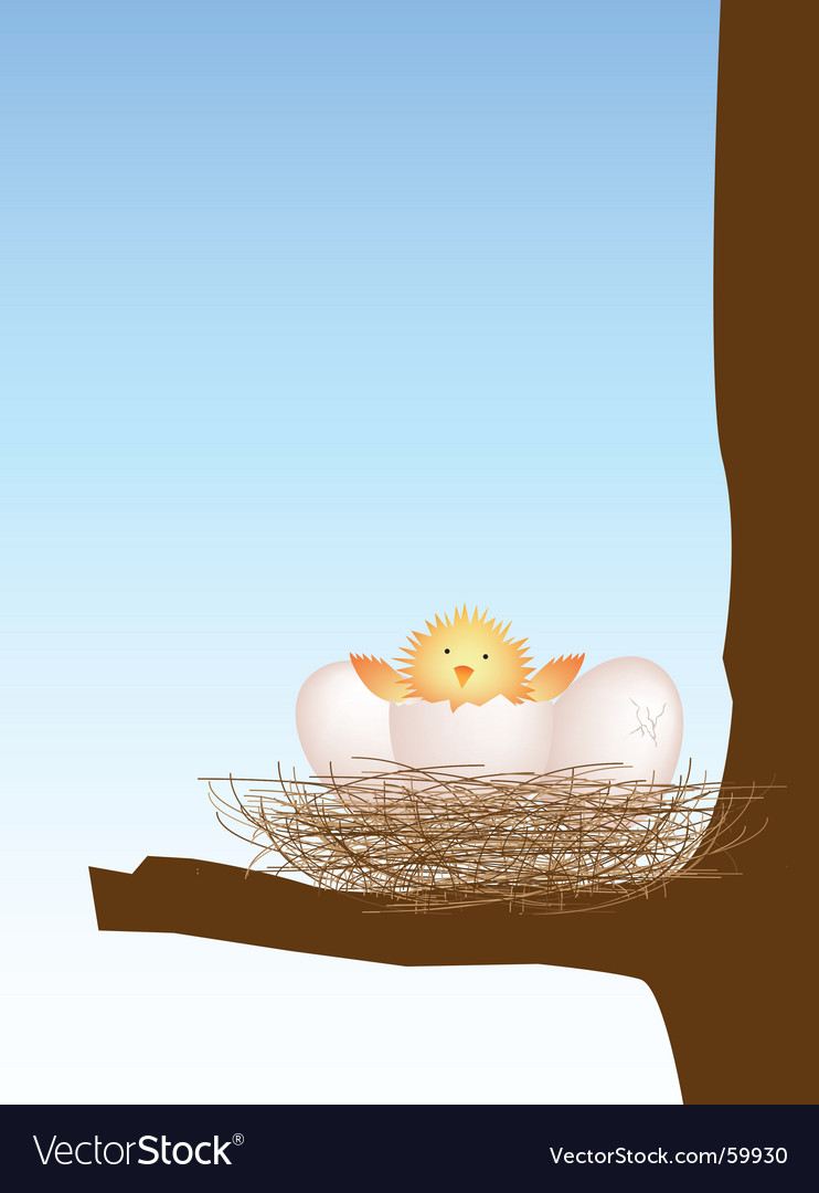 Hatching chick vector | Price: 1 Credit (USD $1)