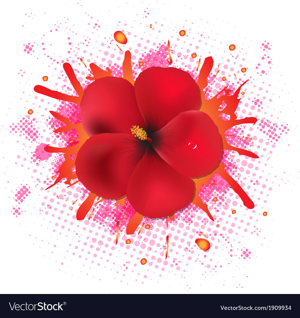 Red hibiscus flowers with blob vector   Price: 1 Credit (USD $1)