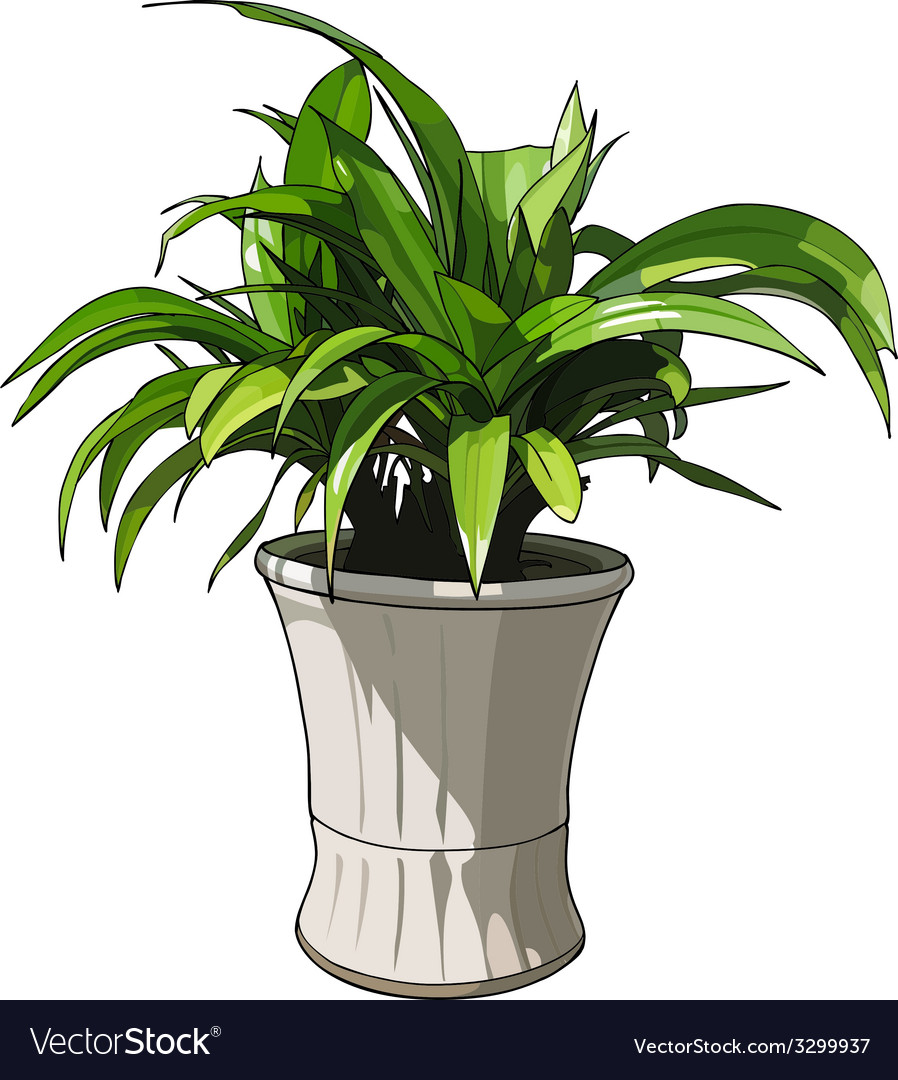 Green plant in white pot vector | Price: 1 Credit (USD $1)