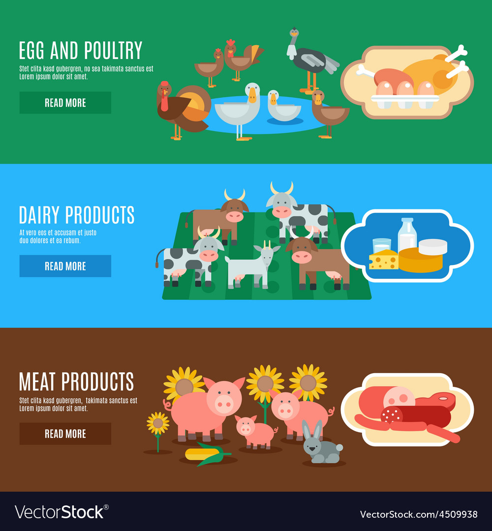 Domestic animals banner vector