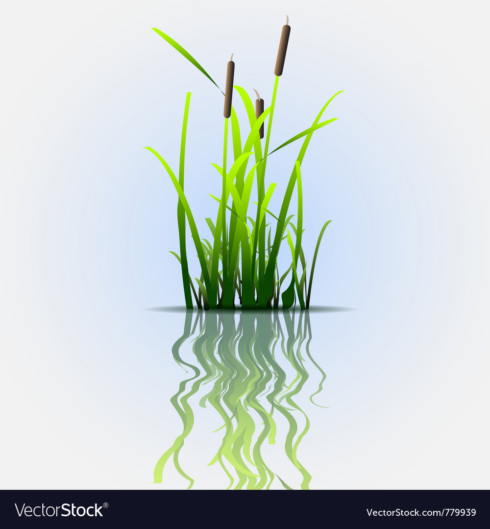 Reflection eco background vector | Price: 1 Credit (USD $1)
