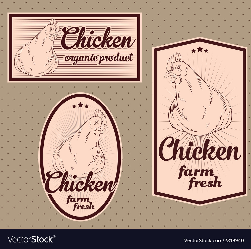Chicken vintage labels set vector | Price: 1 Credit (USD $1)