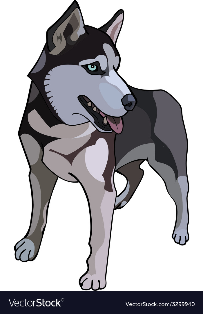 Husky dog painted vector | Price: 1 Credit (USD $1)