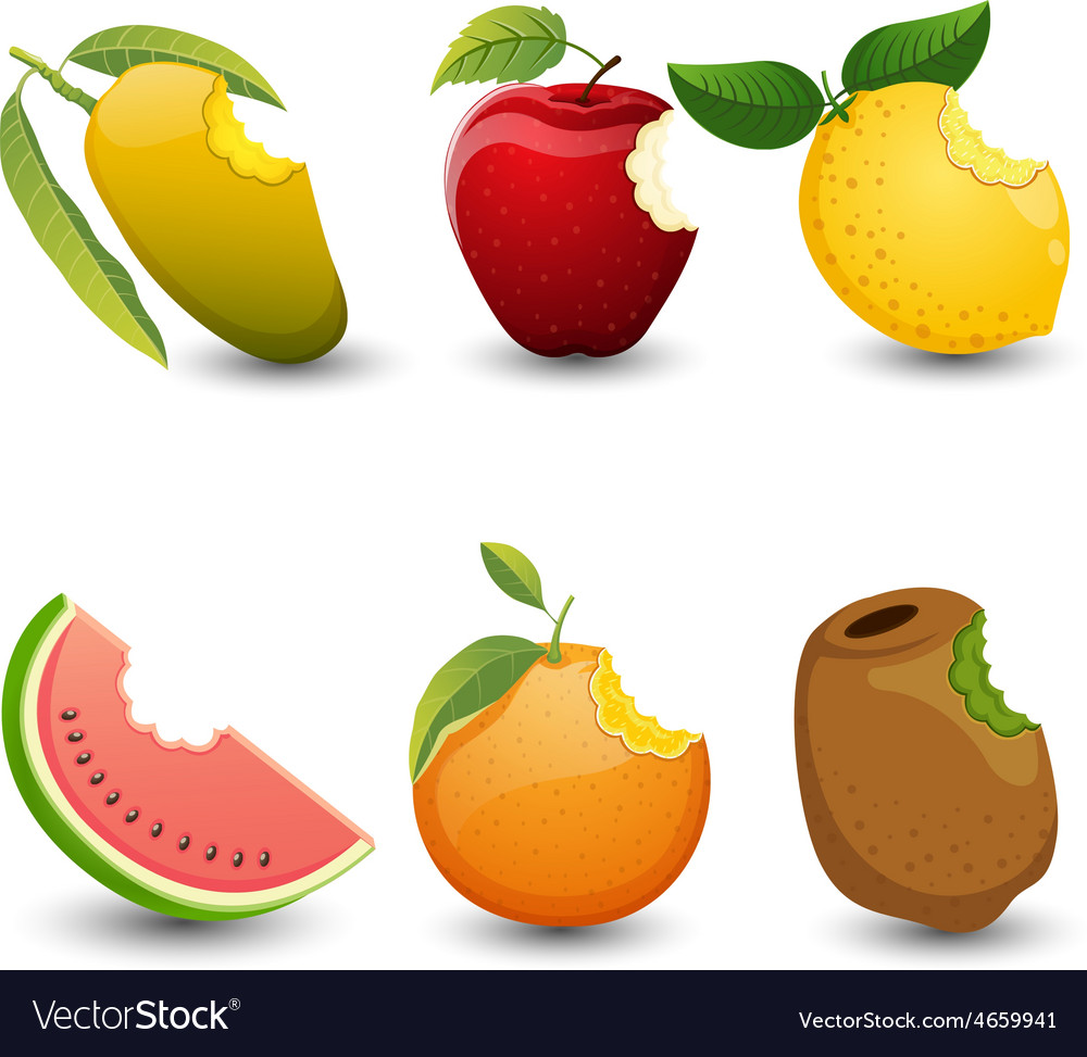 Fruits are bite marks isolated on white background vector