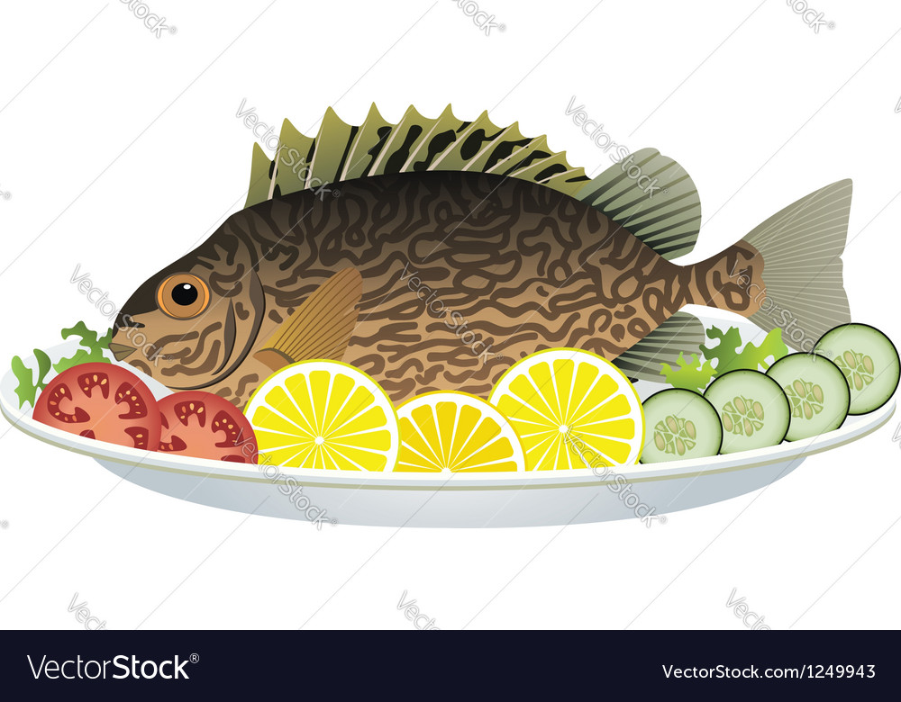 Fish and vegetables vector | Price: 3 Credit (USD $3)