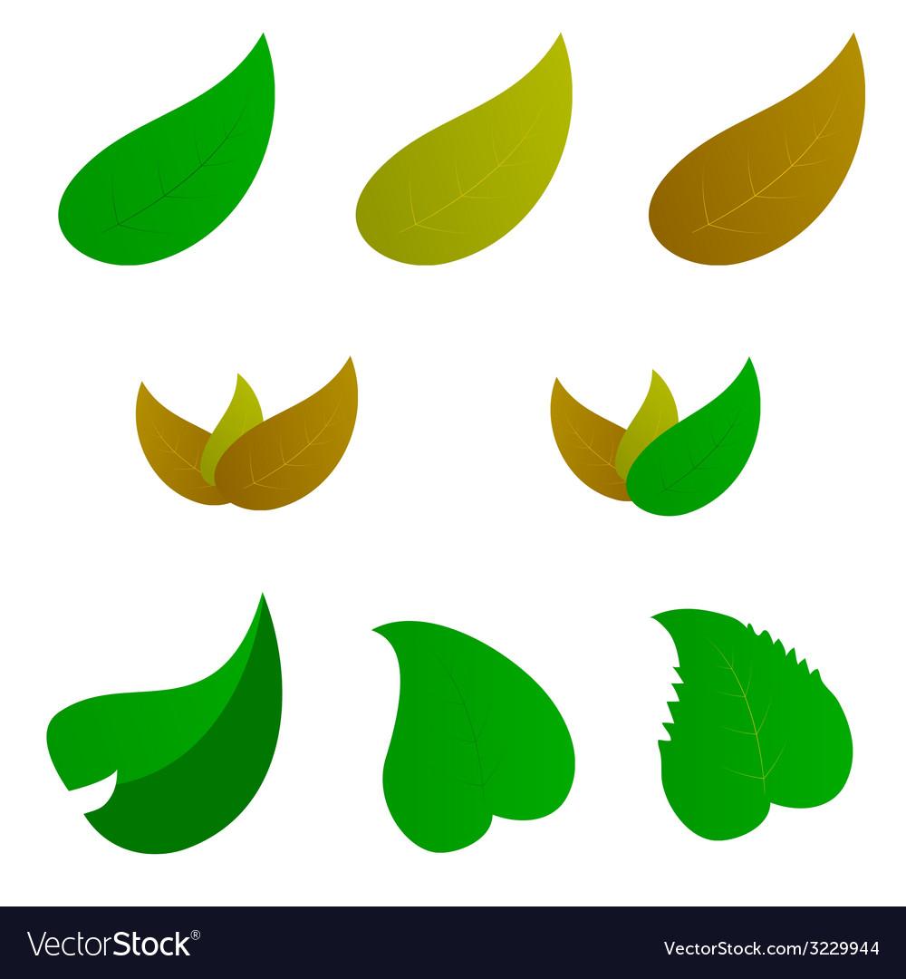 Leaf color vector | Price: 1 Credit (USD $1)