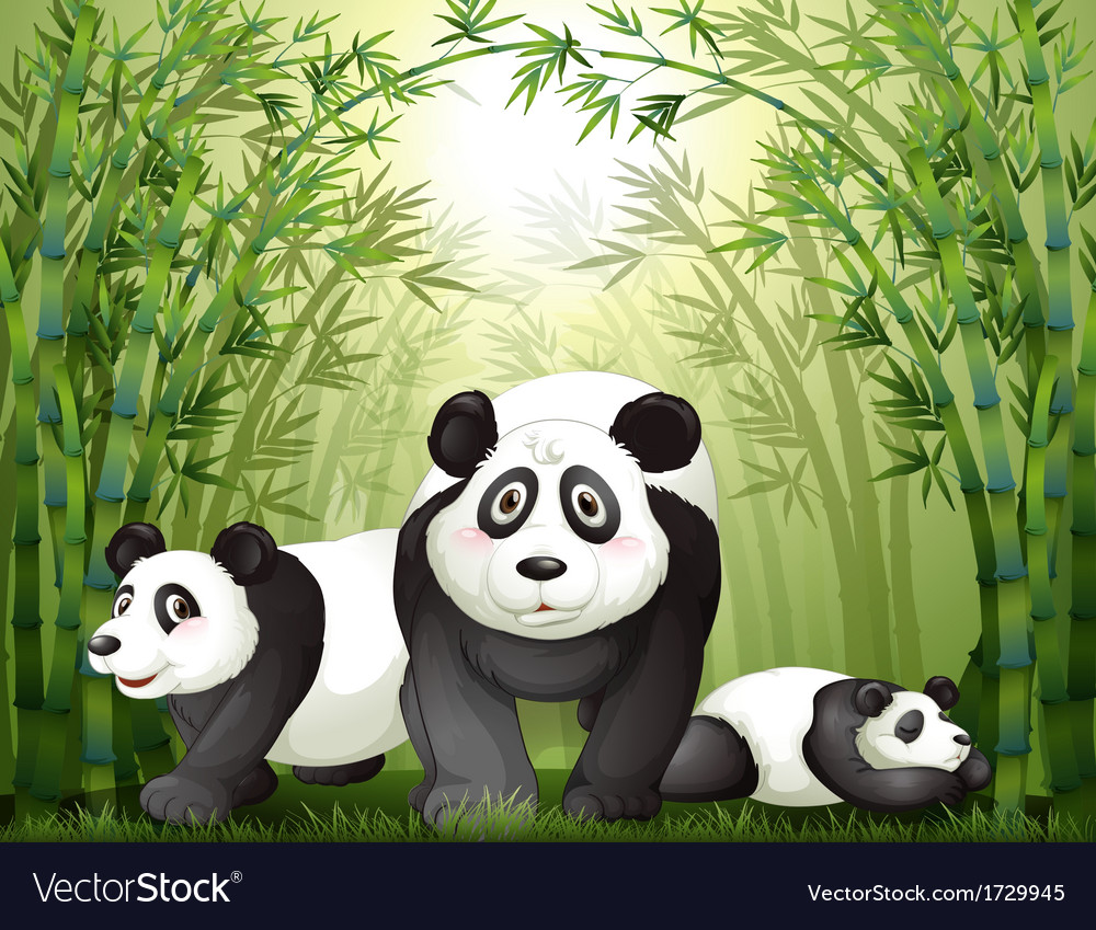 Three big bears at the rainforest vector | Price: 3 Credit (USD $3)