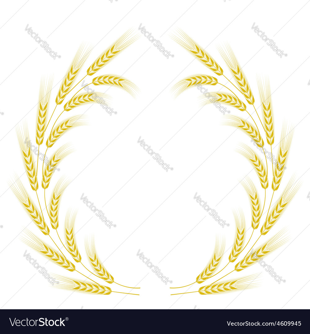 Wheat frame vector | Price: 1 Credit (USD $1)