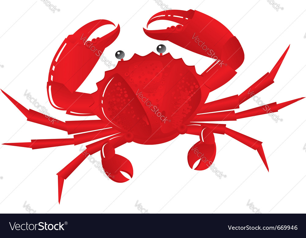 Boiled crab vector | Price: 1 Credit (USD $1)
