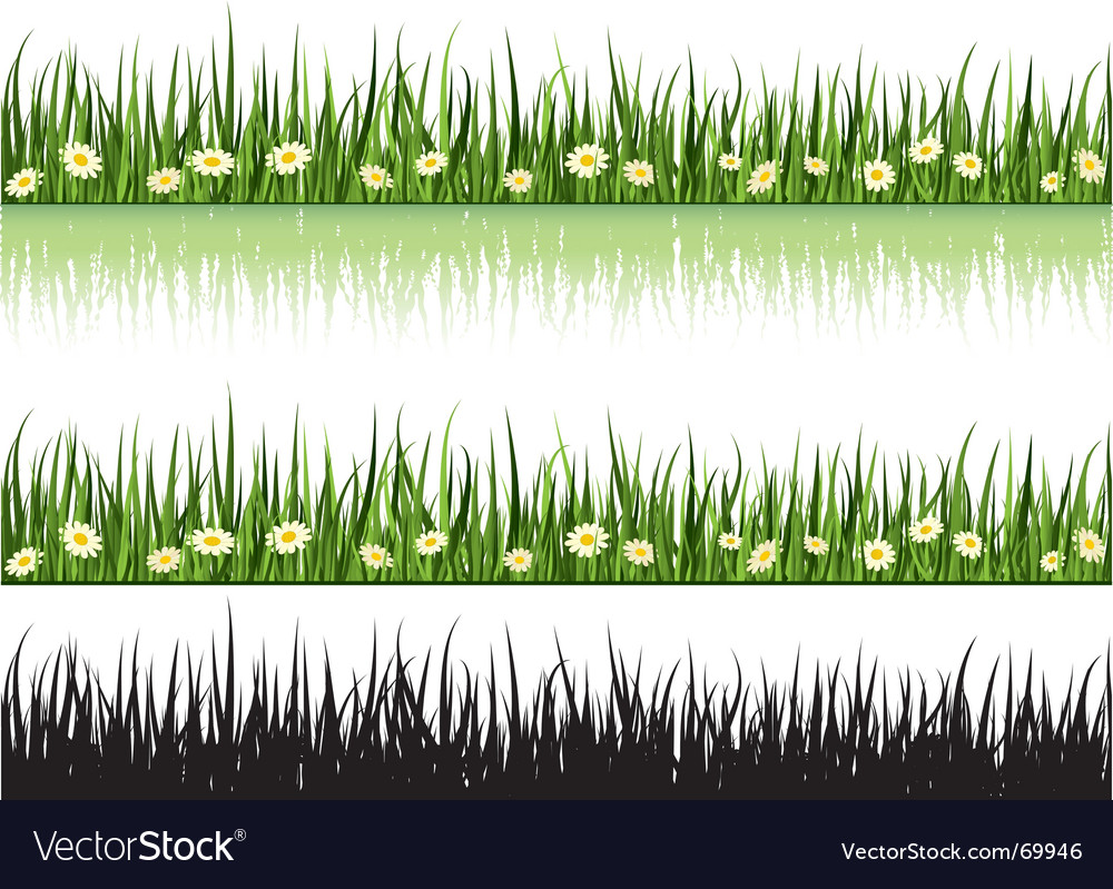 Grass and flowers vector | Price: 1 Credit (USD $1)