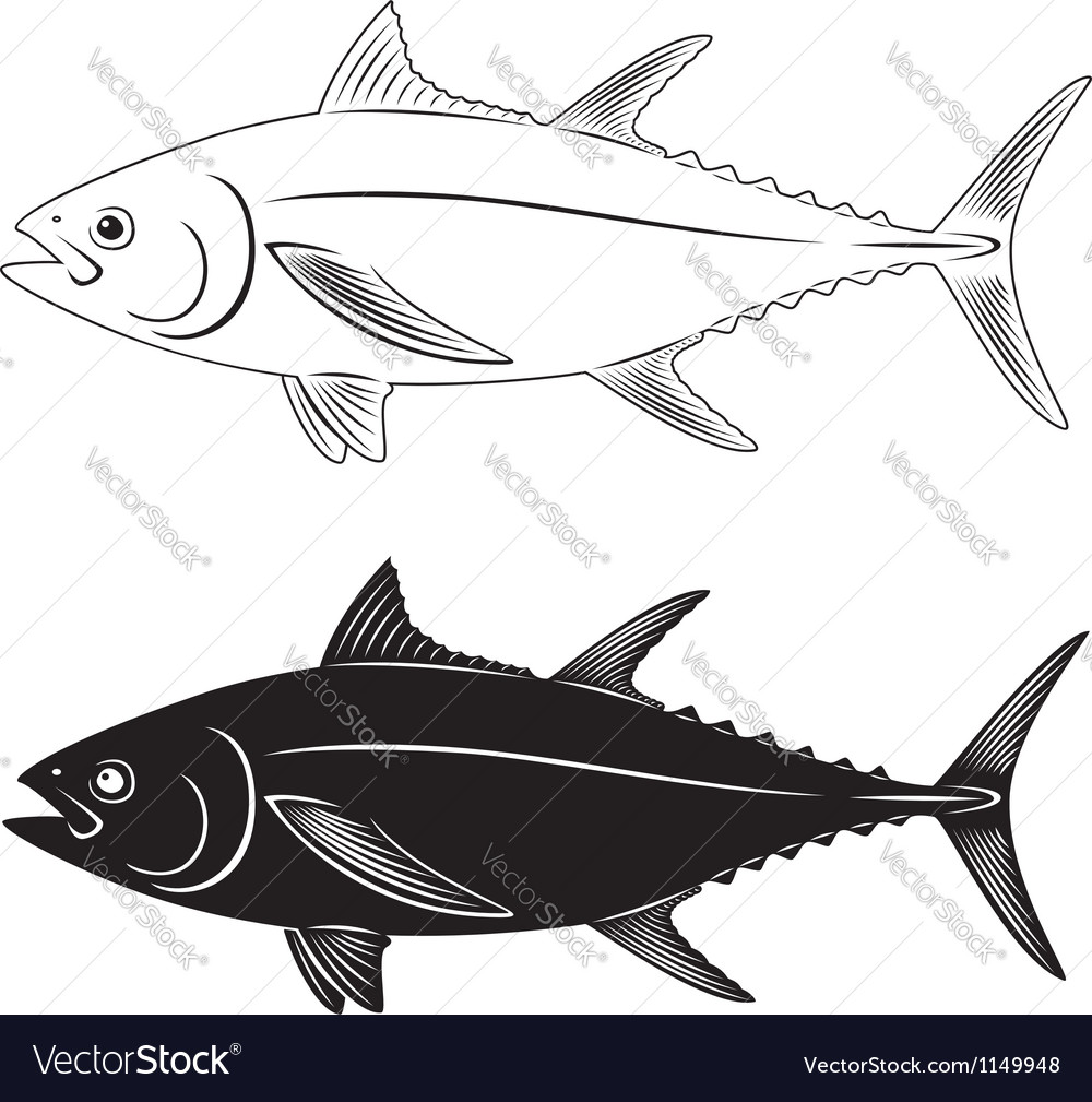 Tuna fish vector | Price: 1 Credit (USD $1)