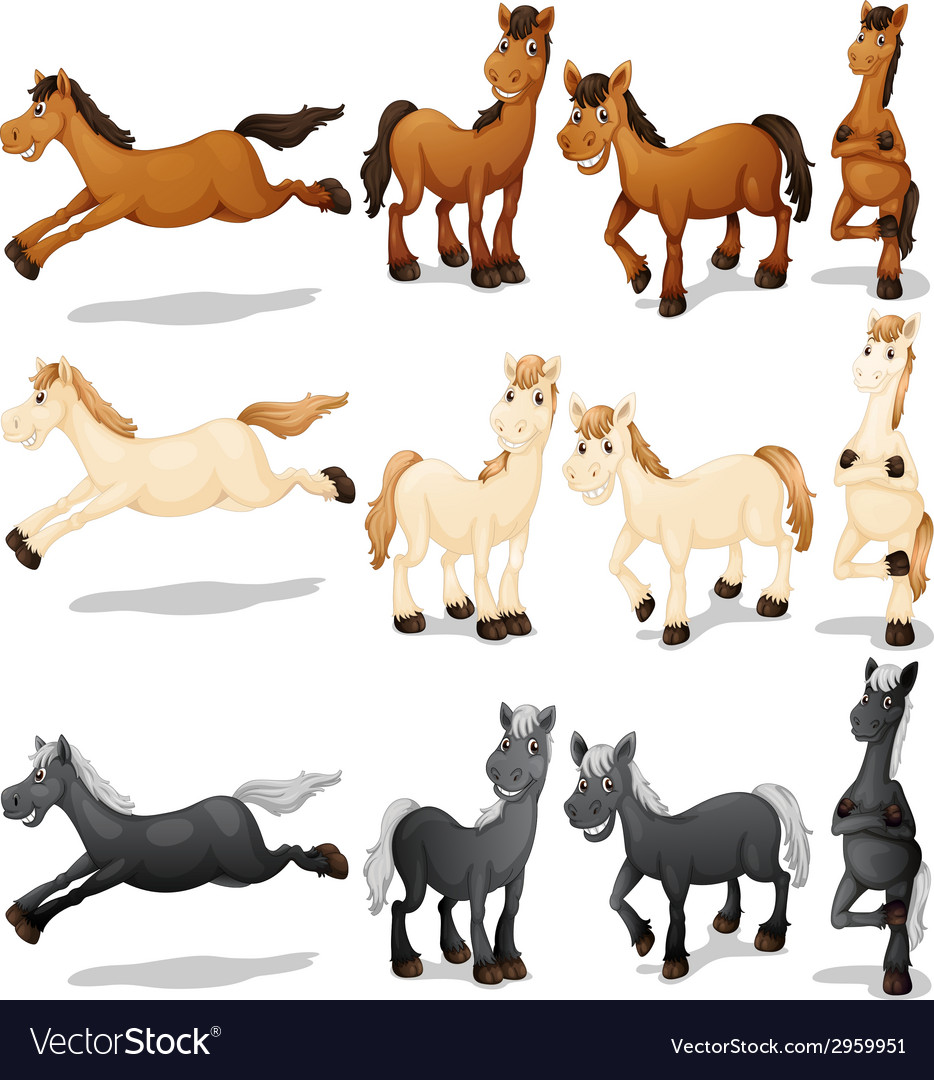 Horse set vector | Price: 1 Credit (USD $1)