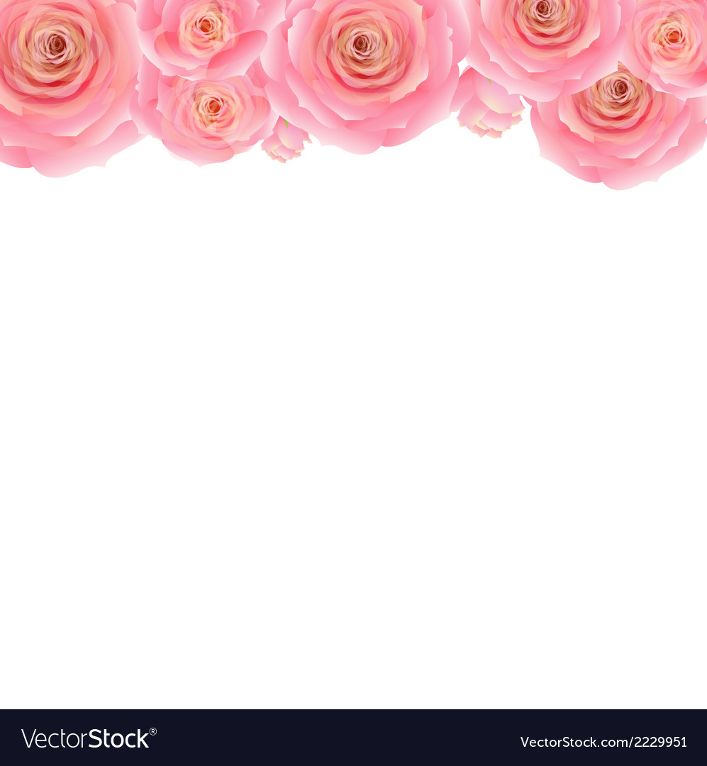 Pastel pink rose border vector | Price: 1 Credit (USD $1)