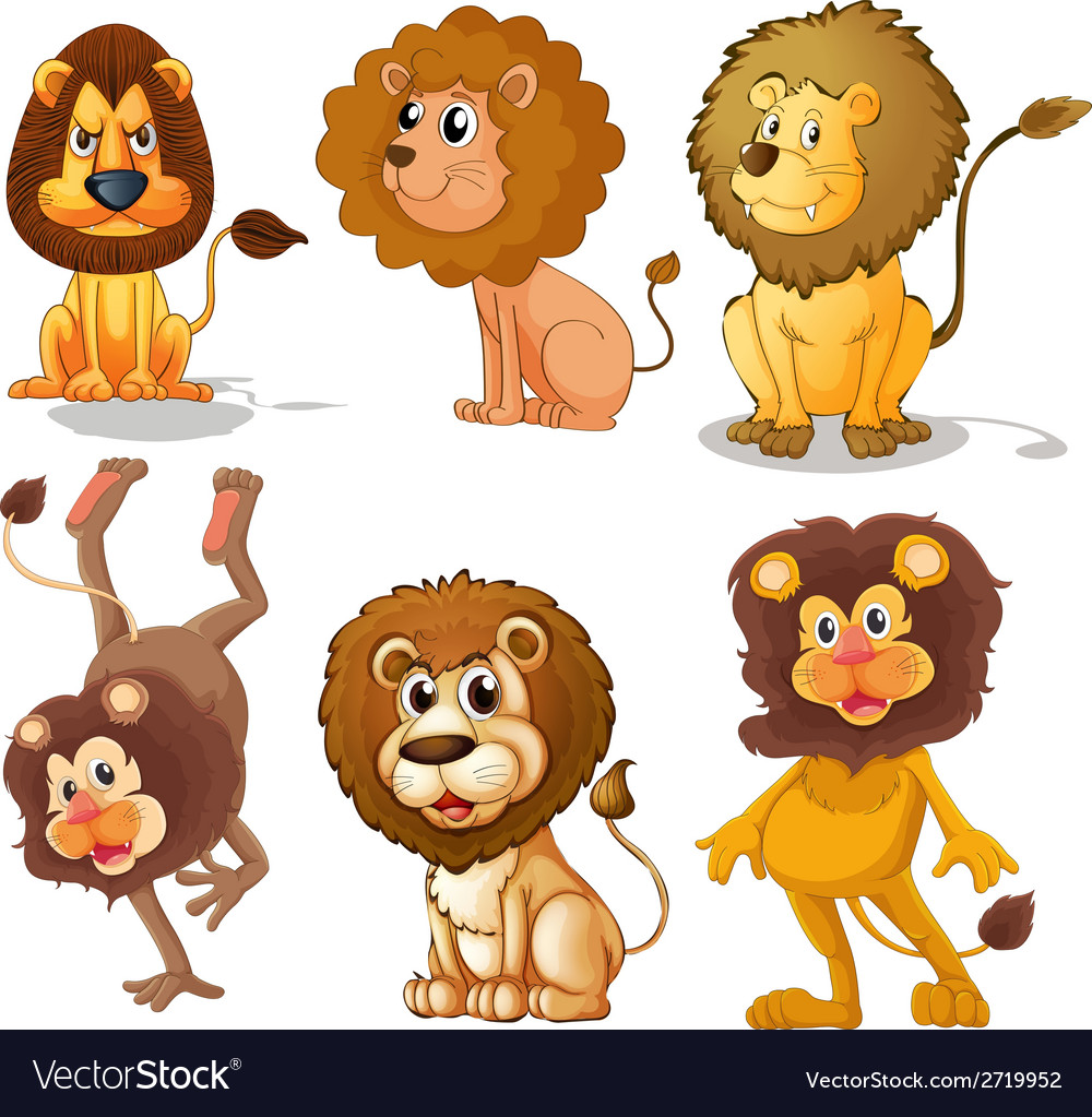 Lions vector | Price: 1 Credit (USD $1)