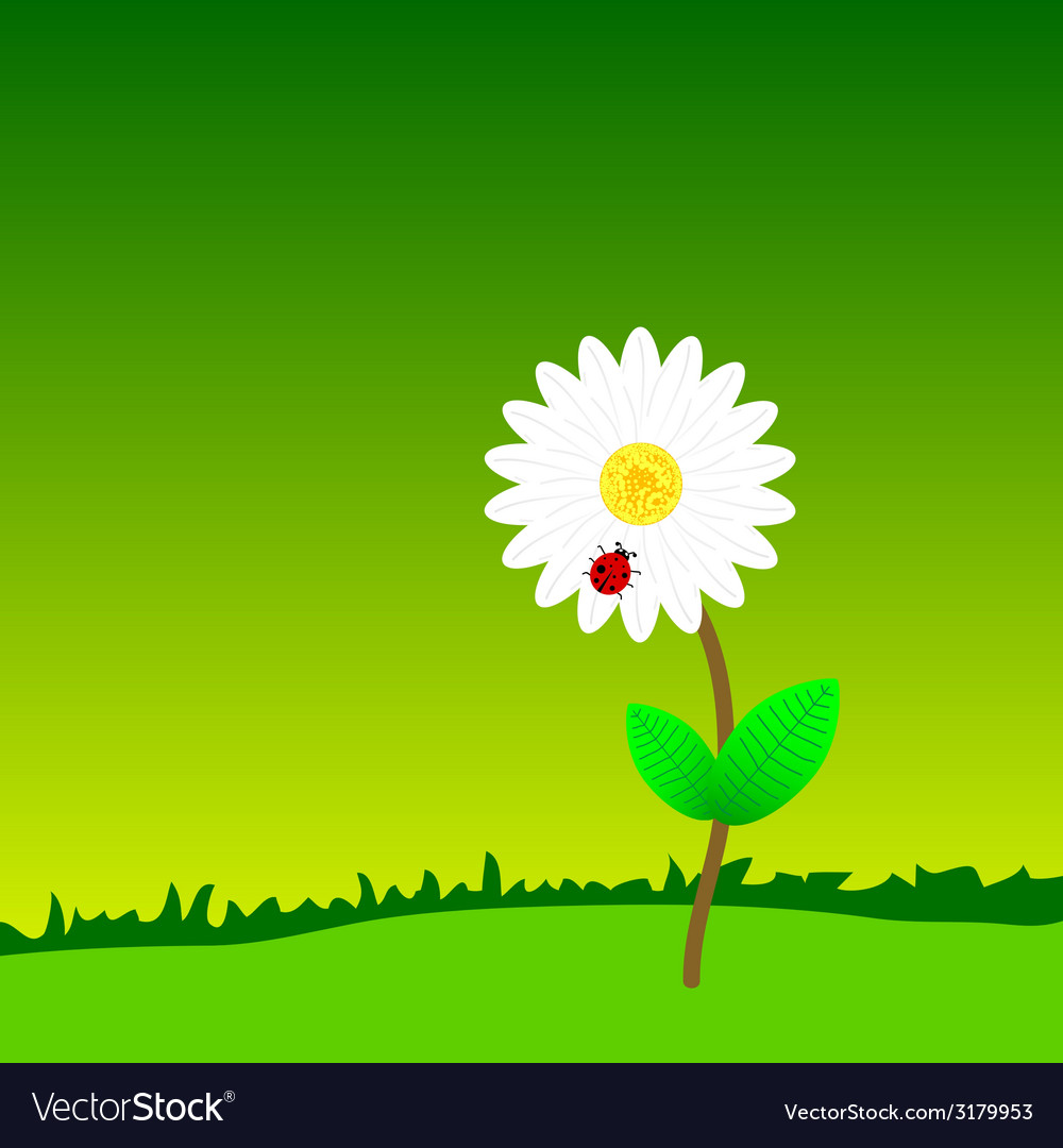 Flower with ladybug in the nature color vector | Price: 1 Credit (USD $1)