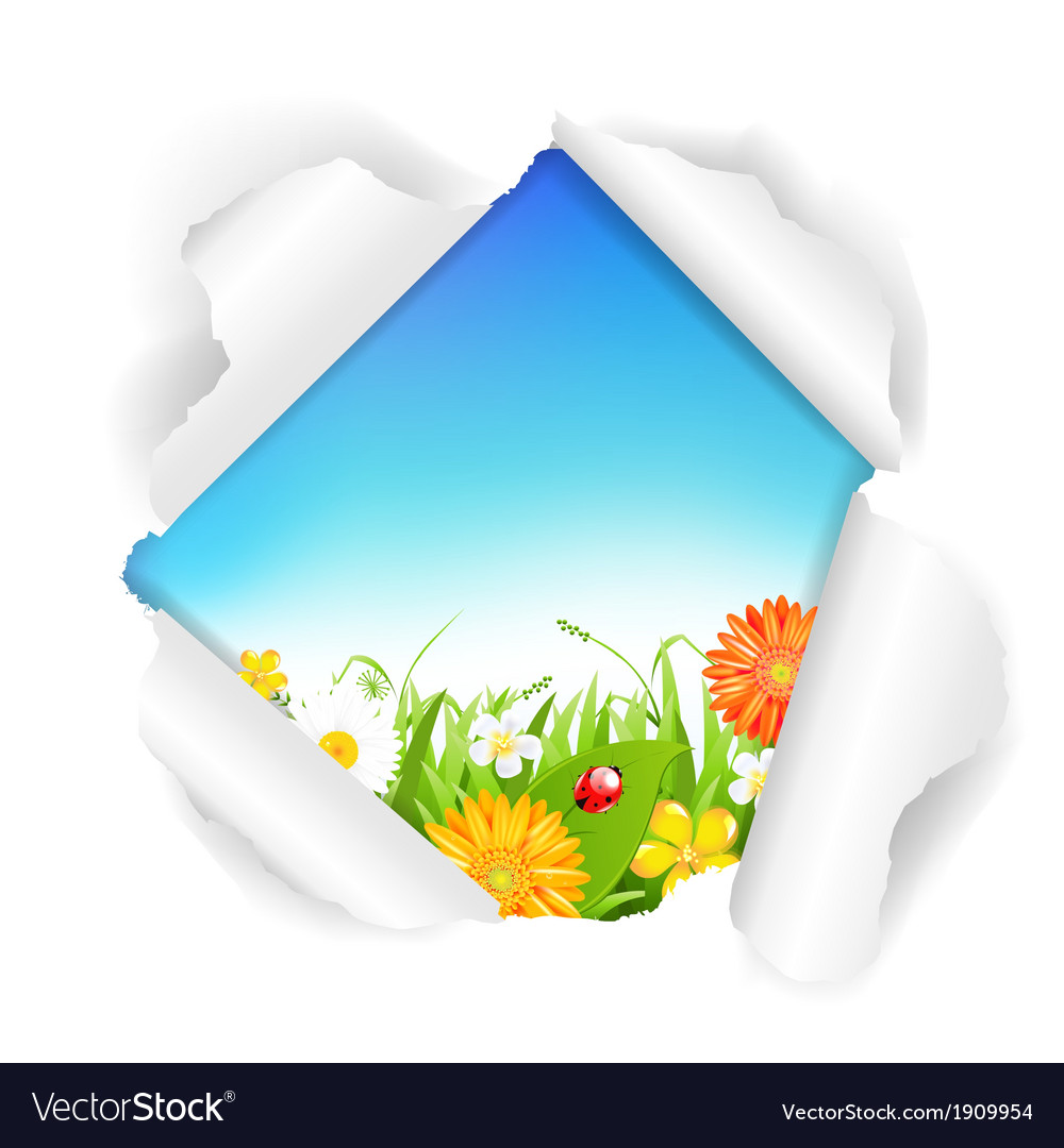 Torn paper with flowers grass and color eggs vector | Price: 1 Credit (USD $1)